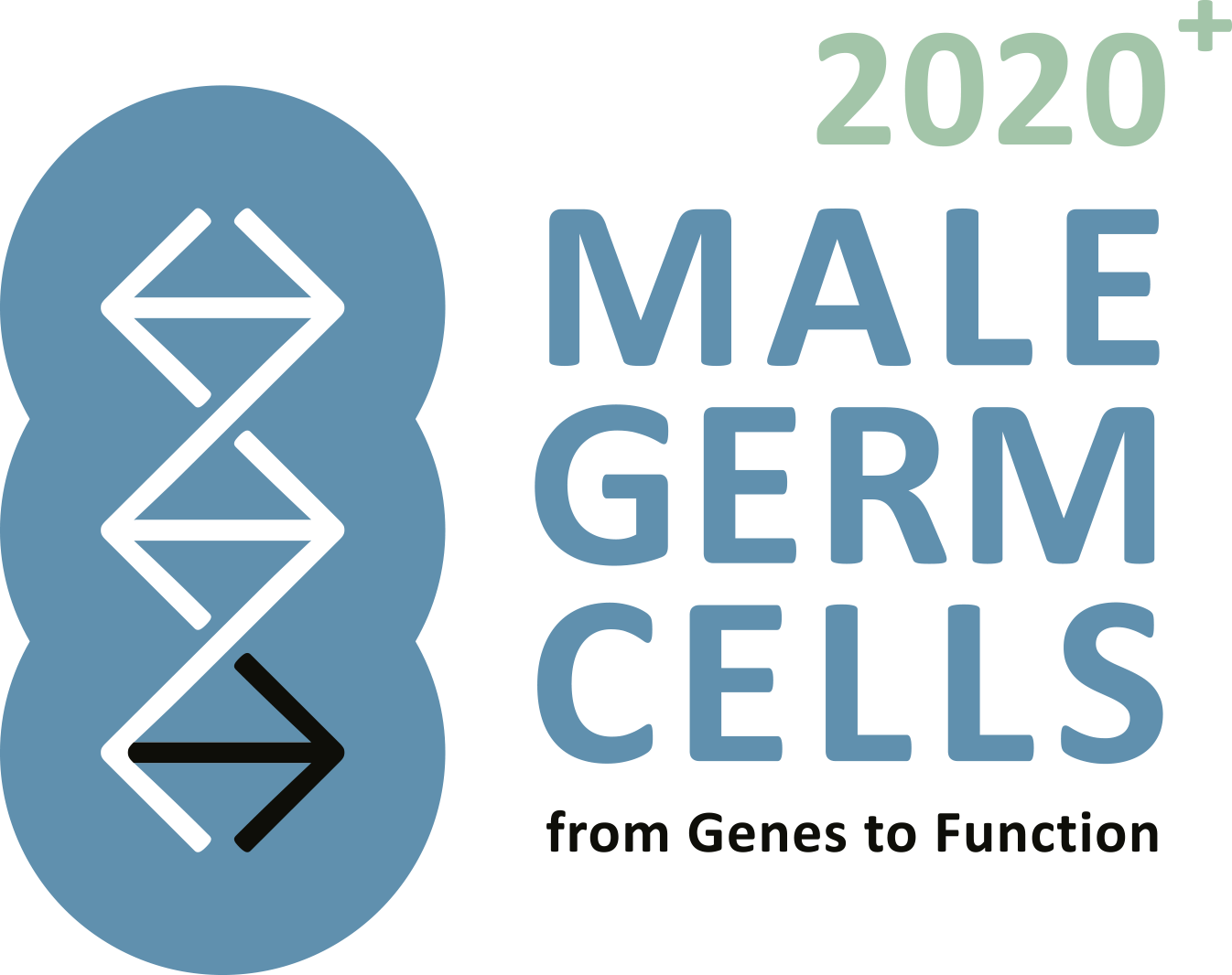 Male Germ Cells Logo